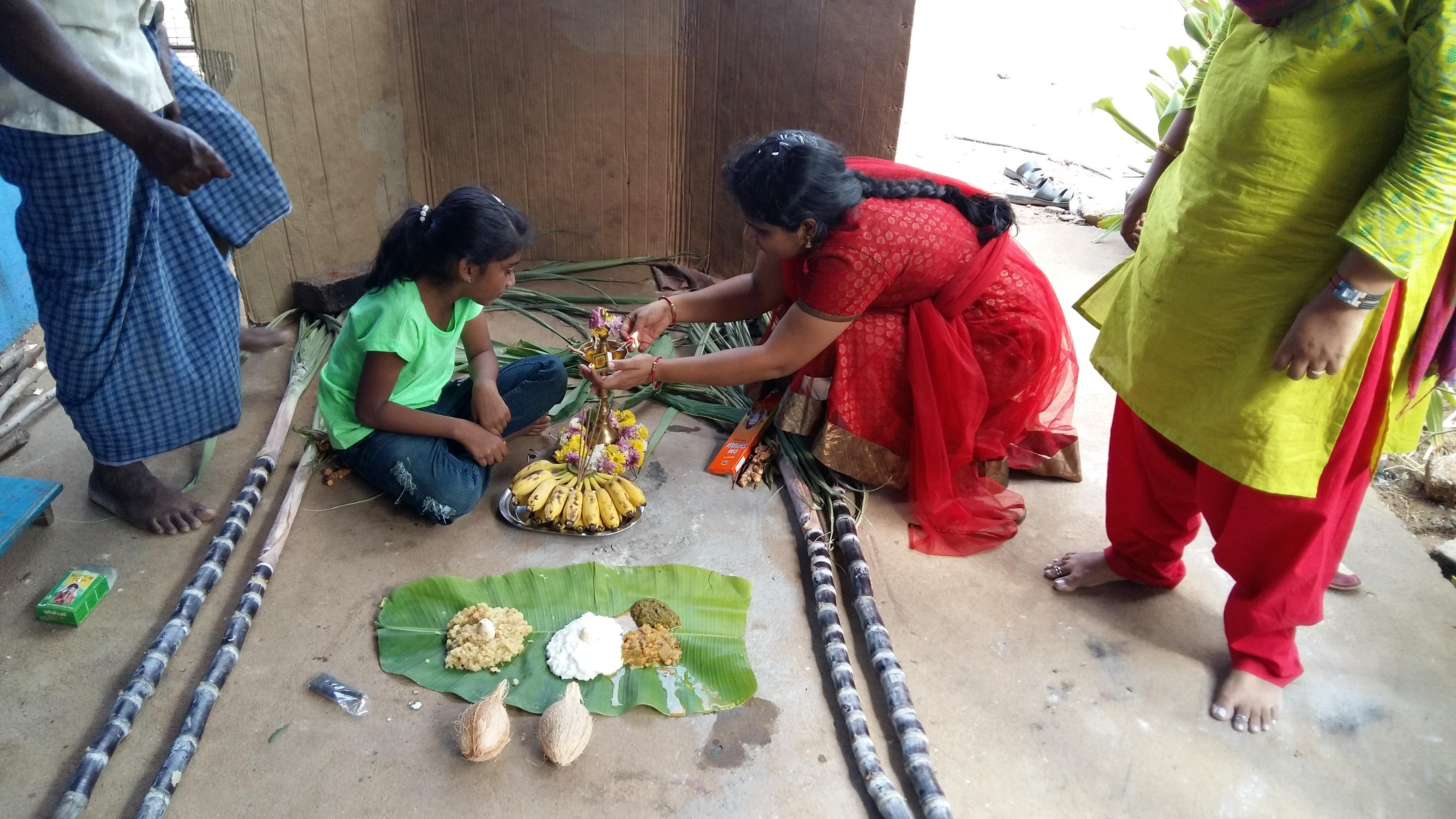 Pongal Festival celebrated in Naveens Garden